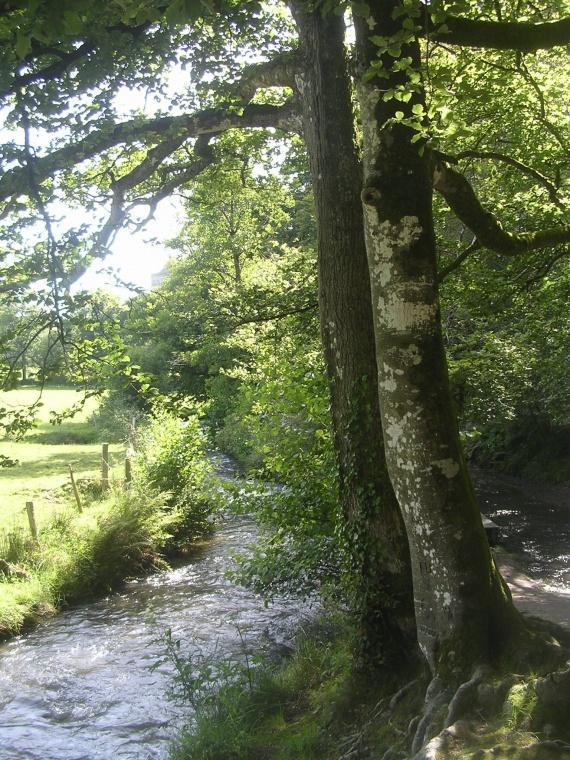 L'Aveyron au palmarès de l'écologie