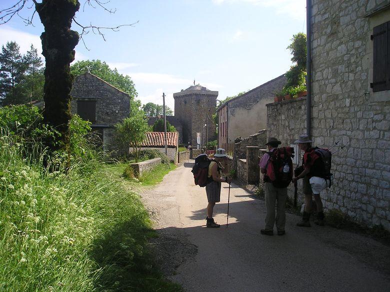 Vivante illustration de la vocation agropastorale du Larzac, la Tour du Viala du Pas de Jaux a été érigée en 1430 à côté du logis des Chevaliers Hospitaliers de Saint-Jean de Jérusalem (existant depuis le XIVe siècle) à la demande des habitants du village