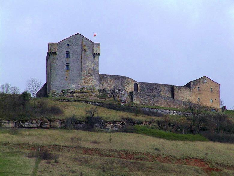 Situé aux abords de la voie romaine de Camarès - Saint-Affrique, ce château féodal, bâti au X° siècle sur un éperon rocheux, domine le rougier de Camarès.
