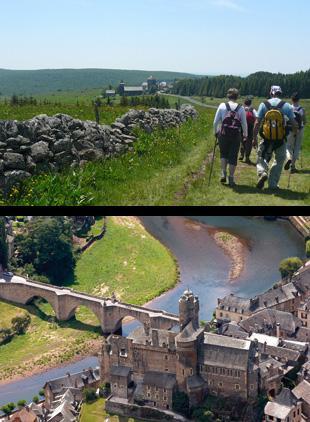 Depuis la Domerie d'Aubrac, havre de paix dans le paysage sauvage de l'Aubrac, le chemin descend vers Saint-Chély-d'Aubrac puis retrouve la vallée du Lot à Saint-Côme-d'Olt.