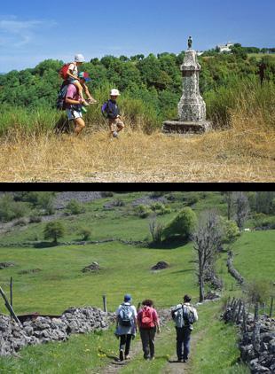 Après plusieurs villages nichés dans un véritable écrin de verdure (Espeyrac, Sénergues), le grand site chargé d'histoire de Conques, rayonnant de lumière et semblant figé par le temps, se dévoilera aux pèlerins