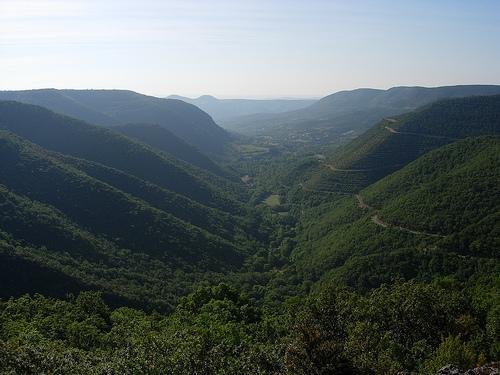 Le Larzac est un vaste plateau de calcaire datant de l'ère jurassique approximativement nivelé par l'érosion et séparé des autres causses par des rivières coulant au fond de gorges et de vallées profondes.