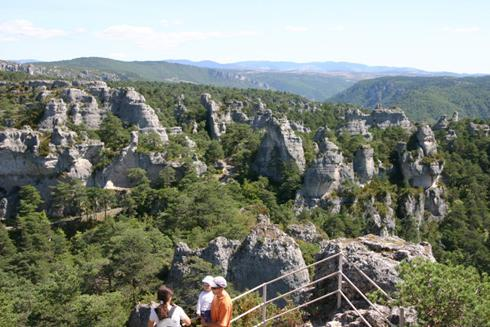 Les grands Causses ont été crées en 1995,  afin de sauvegarder un patrimoine naturel, culturel et social existant.