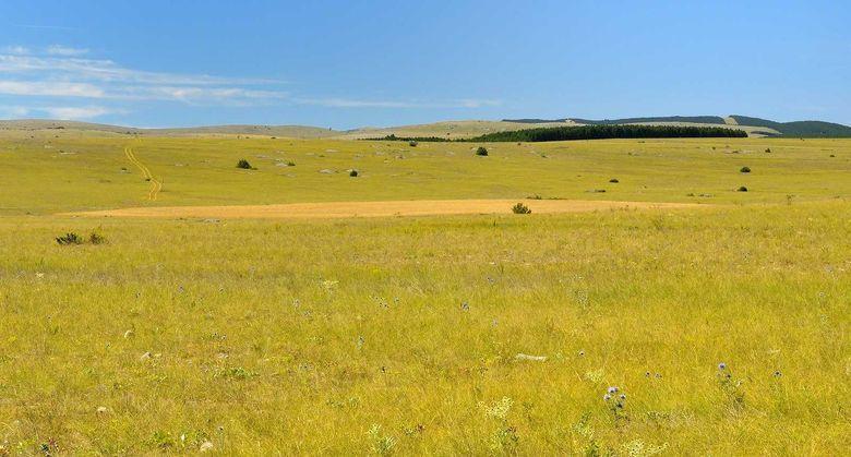 Adossé au sud du Massif Central, le Parc naturel régional des Grands Causses bénéficie d'un climat contrasté et ensoleillé. Des Causses aux prairies du Lévézou, des Rougiers aux contreforts des Cévennes et de l'Aubrac.