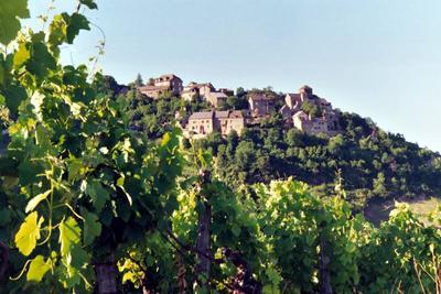 Du village de Cassagnes-Comtaux s'offre aussi une vue imprenable sur la vallée de Clairvaux et sur une partie du vignoble AOC de Marcillac.