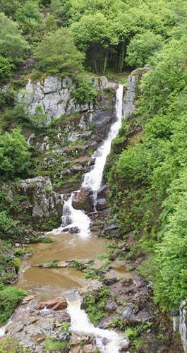 Le site de la cascade du Saut du Chien vaut le déplacement. Surtout par temps de fortes chaleurs.