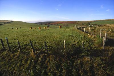 A cheval sur deux r�gions et deux d�partements, le Carladez assure une douce transition de l'Auvergne au Midi-Pyr�n�es...