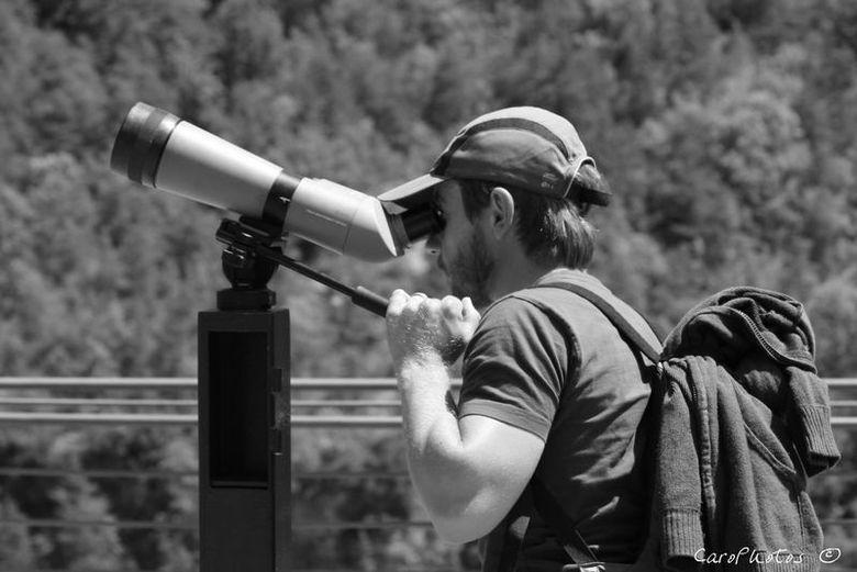 Musée de plus de 1000m², salle de vidéo transmission avec caméras interactives et commentaires d'un ornithologue. Terrasse d'observation des vautours avec lunettes fournies et accés à un site classé (panorama sur les Gorges de la Jonte).