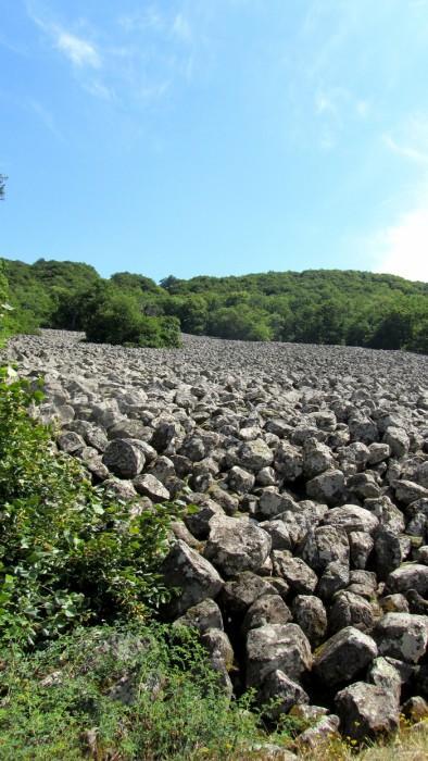 Situé 800m avant le château de Roquelaure, cet impressionnant champ de pierres, appelé Clapas de Thubiès va se perdre dans une forêt de hêtres, chênes et châtaigniers.