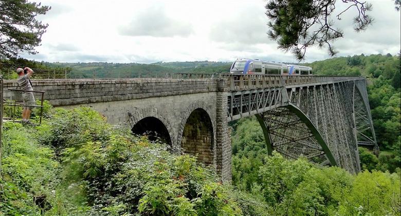 Le viaduc du Viaur est reconnaissable entre tous par sa silhouette où la voie ferrée passe au sommet et non au milieu de la structure, comme c'est le cas pour les autres ponts à poutre en porte-à-faux.