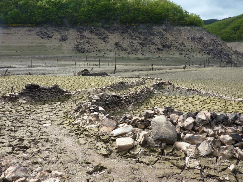 En amont du barrage de Sarrans où un filet sera tendu qui permettra de récupérer les poissons en bon état.