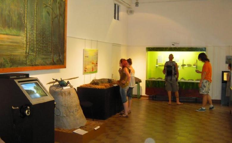 Au cœur de l'ancien bassin houiller, le musée géologie Pierre Vetter à Decazeville, présente toute la richesse géologique de l'Aveyron.