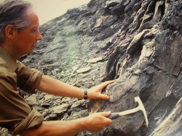 Désireux de préserver les roches et les fossiles qu'il collecta inlassablement tout au long de sa carrière, Pierre Vetter créa en 1977 le Musée de Géologie de Decazeville.