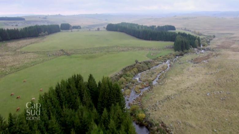L'Aubrac est un plateau d'altitude au milieu du ciel à cheval sur 3 départements, l'Aveyron, le Cantal et la Lozère.