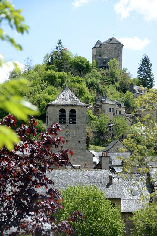 Le Moulin de Terral est l'un des 15 moulins connus à ce jour qui s'échelonnaient le long de la Boralde de Saint-Chély