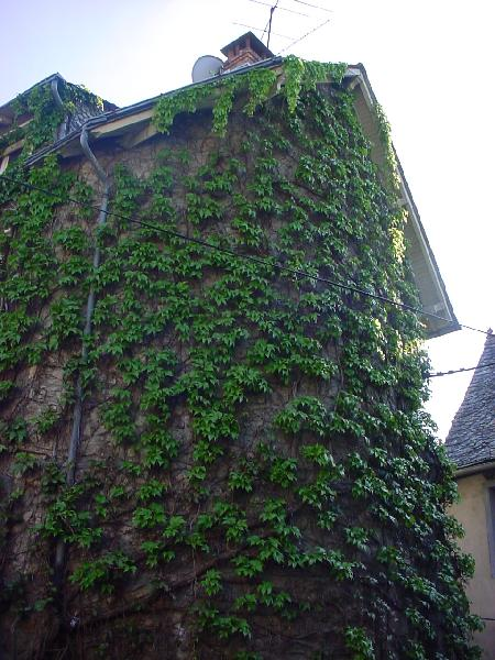 La tour d'Escombels - Aveyron