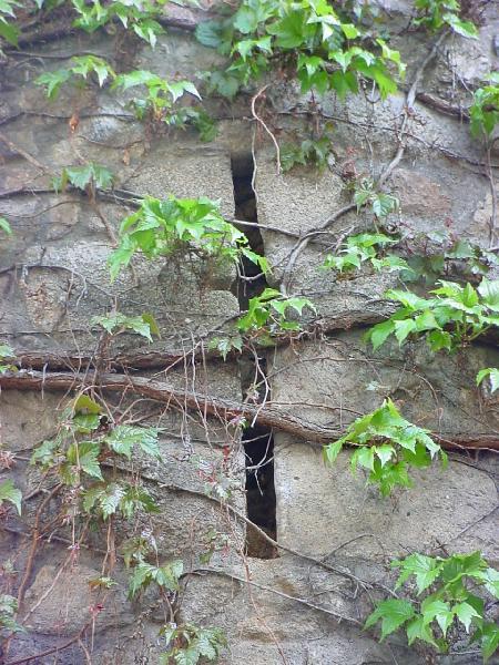 La meurtrière de la tour d'Escombels - Aveyron