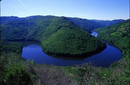 Creus�es dans les plateaux granitiques de la Haute Auvergne, les gorges de la Truy�re offrent un environnement d�une infinie richesse, pr�serv� et accueillant�.