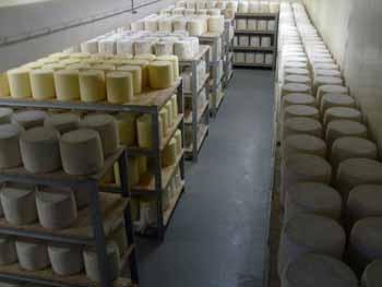 Produits du terroir Aveyronnais