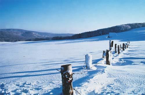 L'Aubrac peut être terrifiant l'hiver, quand la tempête fait rage, ou au printemps, lorsque la brume tombe si dense que vous êtes instantanément perdu